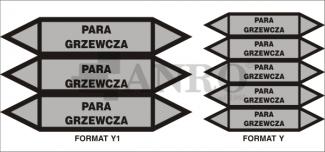 Para_grzewcza